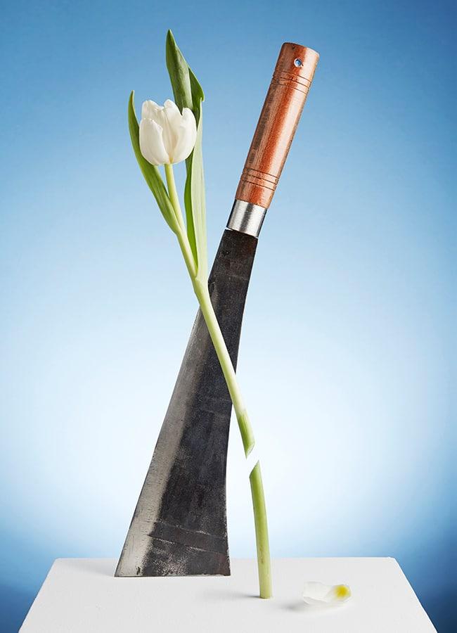 1_Messer7605_Tulpe