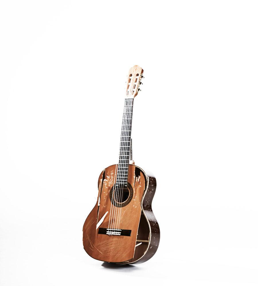 Damian Lynn - Guitar